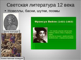 Светская литература 12 века Новеллы, басни, шутки, поэмы Данте Алигьери Божес