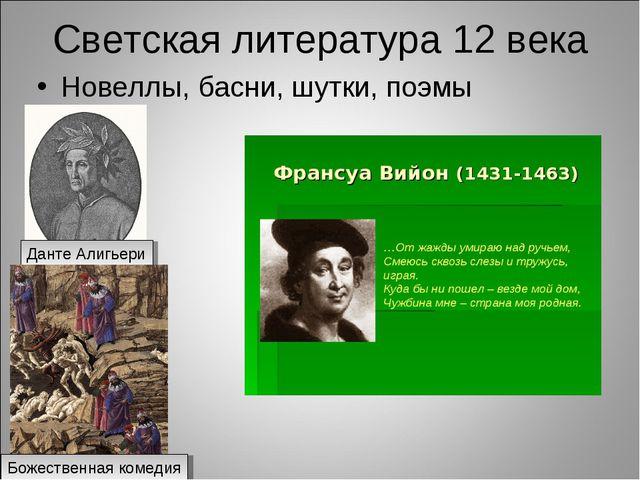 Светская литература 12 века Новеллы, басни, шутки, поэмы Данте Алигьери Божес...