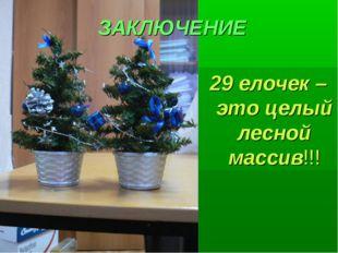 ЗАКЛЮЧЕНИЕ 29 елочек – это целый лесной массив!!!