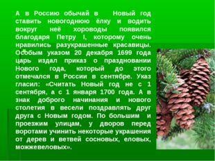 А в Россию обычай в Новый год ставить новогоднюю ёлку и водить вокруг неё хо
