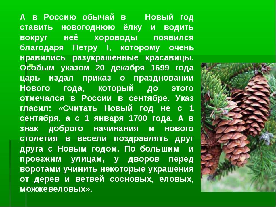 А в Россию обычай в Новый год ставить новогоднюю ёлку и водить вокруг неё хо...