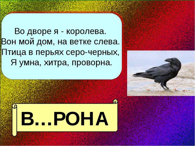 Во дворе я - королева. Вон мой дом, на ветке слева. Птица в перьях серо-черны...