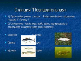 """Станция """"Познавательная» 1) Прав ли был ученик , сказав : """" Рыбы зимой спят с"""