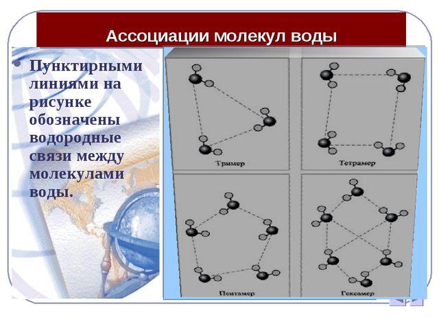 Ассоциации молекул воды Пунктирными линиями на рисунке обозначены водородные...