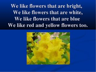 We like flowers that are bright, We like flowers that are white, We like flow