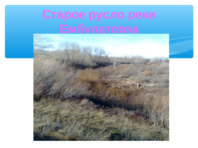 Старое русло реки Ембулатовка
