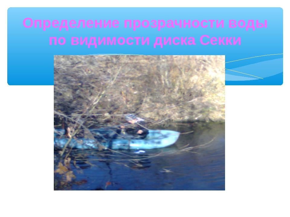 Определение прозрачности воды по видимости диска Секки