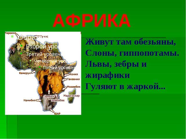 АФРИКА Живут там обезьяны, Слоны, гиппопотамы. Львы, зебры и жирафики Гуляют...