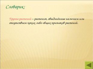 Словарик: Группа растений – растения, объединённые наличием или отсутствием