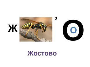 Ж , т О О Жостово