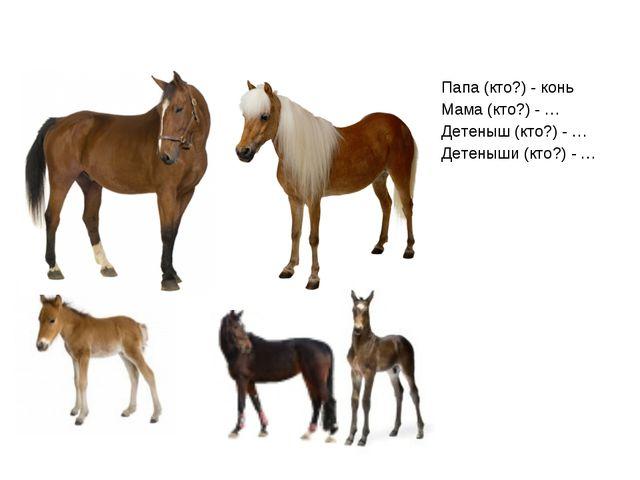 Папа (кто?) - конь Мама (кто?) - … Детеныш (кто?) - … Детеныши (кто?) - …