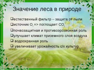 Значение леса в природе естественный фильтр – защита от пыли источник О2 => п