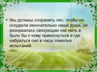 Мы должны сохранить лес, чтобы не оскудели окончательно наши души, не разорва