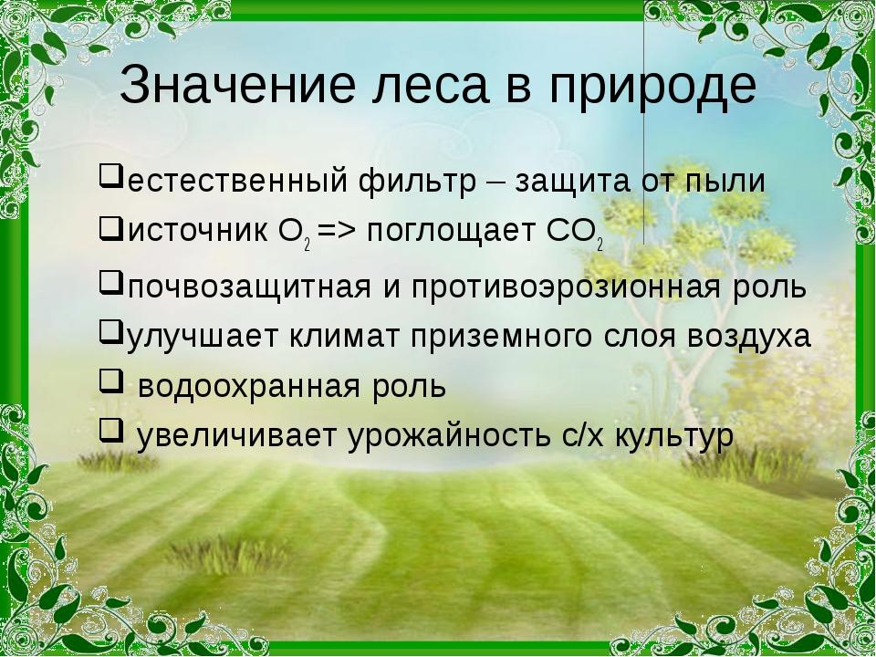 Значение леса в природе естественный фильтр – защита от пыли источник О2 => п...