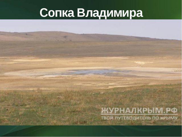Сопка Владимира Вернадского