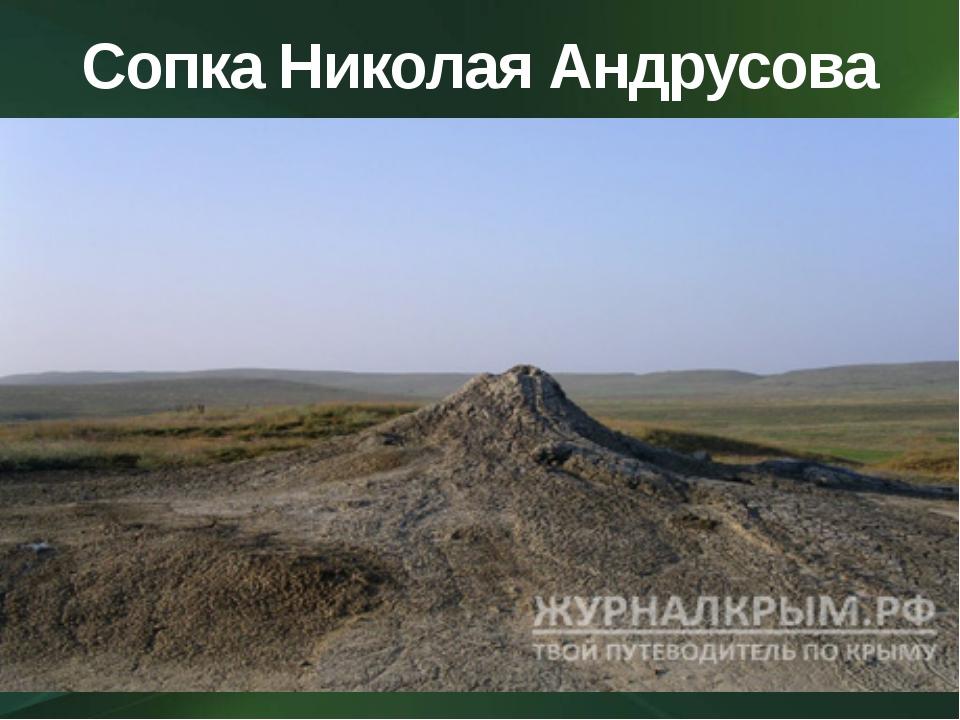Сопка Николая Андрусова