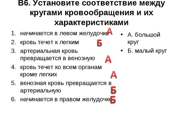 В6. Установите соответствие между кругами кровообращения и их характеристикам...