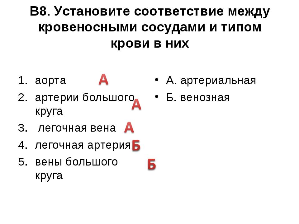 В8. Установите соответствие между кровеносными сосудами и типом крови в них а...