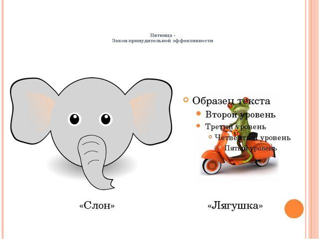 Пятница - Закон принудительной эффективности «Лягушка» «Слон»
