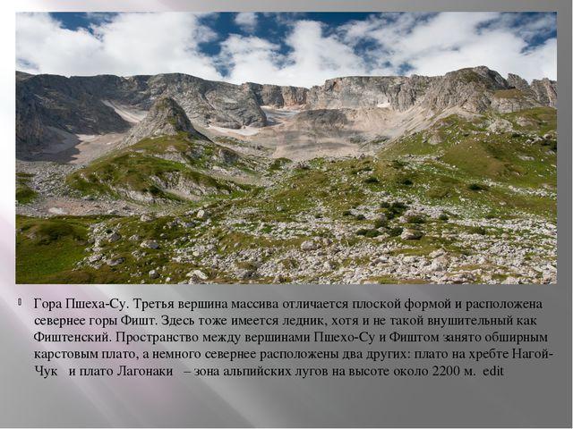 Гора Пшеха-Су. Третья вершина массива отличается плоской формой и расположена...