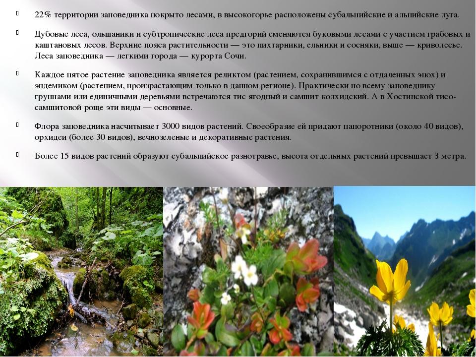 22% территории заповедника покрыто лесами, в высокогорье расположены субальпи...