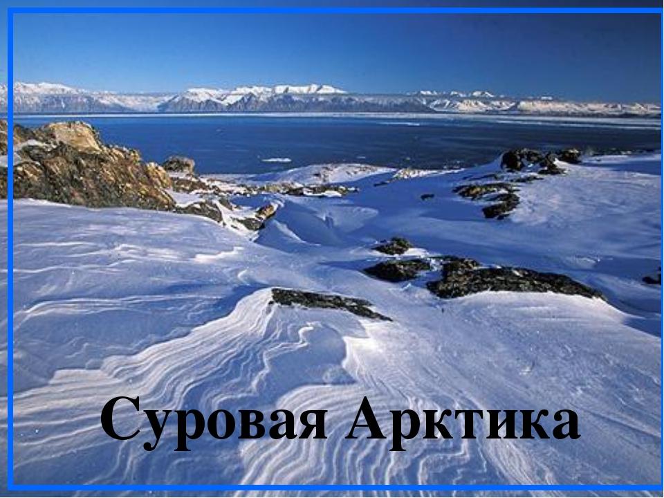 Суровая Арктика