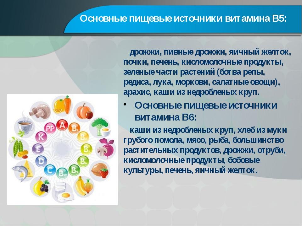 Основные пищевые источники витамина В5: дрожжи, пивные дрожжи, яичный желток,...