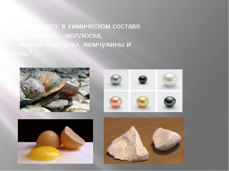 1.Что общего в химическом составе раковины моллюска, яичной скорлупы, жемчуж...
