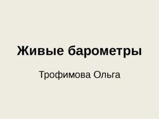 Живые барометры Трофимова Ольга