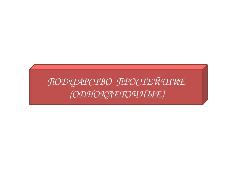 ПОДЦАРСТВО ПРОСТЕЙШИЕ (ОДНОКЛЕТОЧНЫЕ)