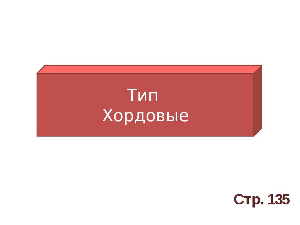 Тип Хордовые Стр. 135