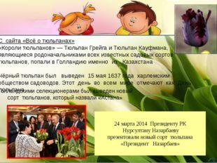 С сайта «Всё о тюльпанах» «Короли тюльпанов» — Тюльпан Грейга и Тюльпан Кауф