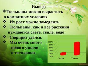Вывод: Тюльпаны можно вырастить в комнатных условиях Их рост можно замедлить.