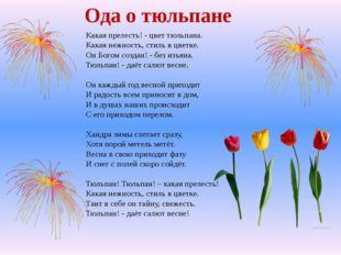 Какая прелесть! - цвет тюльпана. Какая нежность, стиль в цветке. Он Богом соз