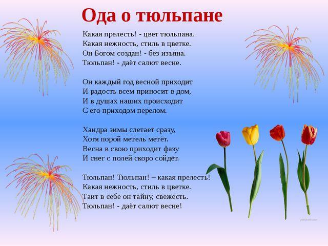 Какая прелесть! - цвет тюльпана. Какая нежность, стиль в цветке. Он Богом соз...