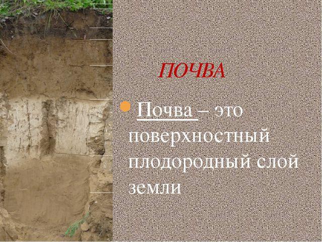 ПОЧВА Почва – это поверхностный плодородный слой земли