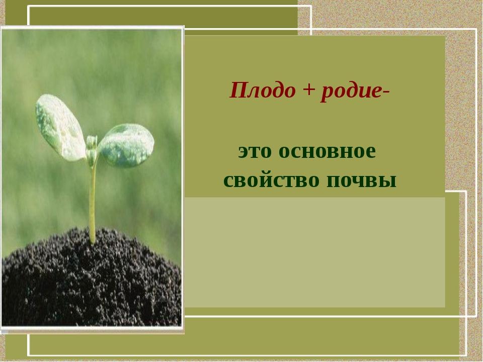 Плодо + родие- это основное свойство почвы