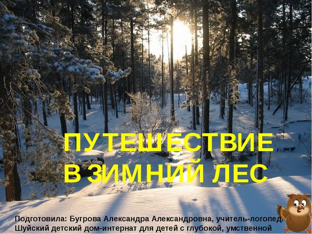 ПУТЕШЕСТВИЕ В ЗИМНИЙ ЛЕС Подготовила: Бугрова Александра Александровна, учите...