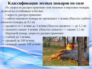 Классификация лесных пожаров по силе По скорости распространения огня низов