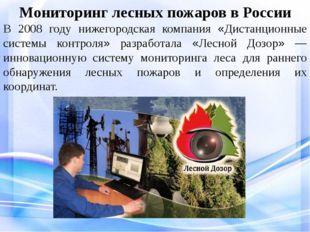 Мониторинг лесных пожаров в России В 2008 году нижегородская компания «Диста
