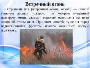 Встречный огонь Встречный пал (встречный огонь, отжиг) — способ тушения лес