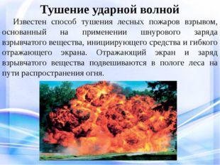 Тушение ударной волной Известен способ тушения лесных пожаров взрывом, осно