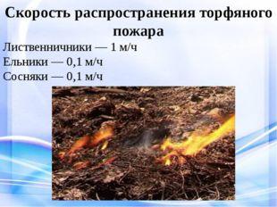 Скорость распространения торфяного пожара Лиственничники — 1 м/ч Ельники — 0