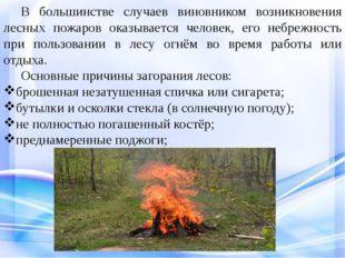 В большинстве случаев виновником возникновения лесных пожаров оказывается ч