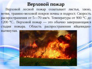 Верховой пожар Верховой лесной пожар охватывает листья, хвою, ветви, травян
