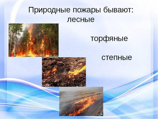 Природные пожары бывают: лесные торфяные степные