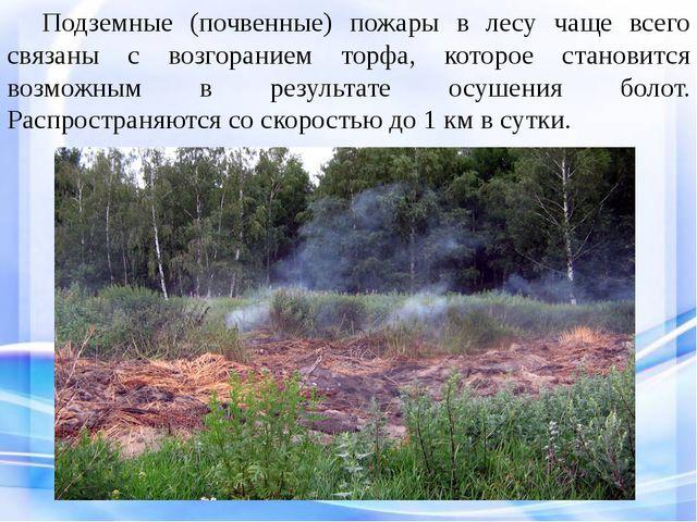 Подземные (почвенные) пожары в лесу чаще всего связаны с возгоранием торфа,...