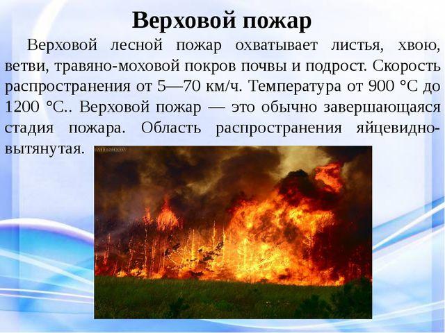 Верховой пожар Верховой лесной пожар охватывает листья, хвою, ветви, травян...