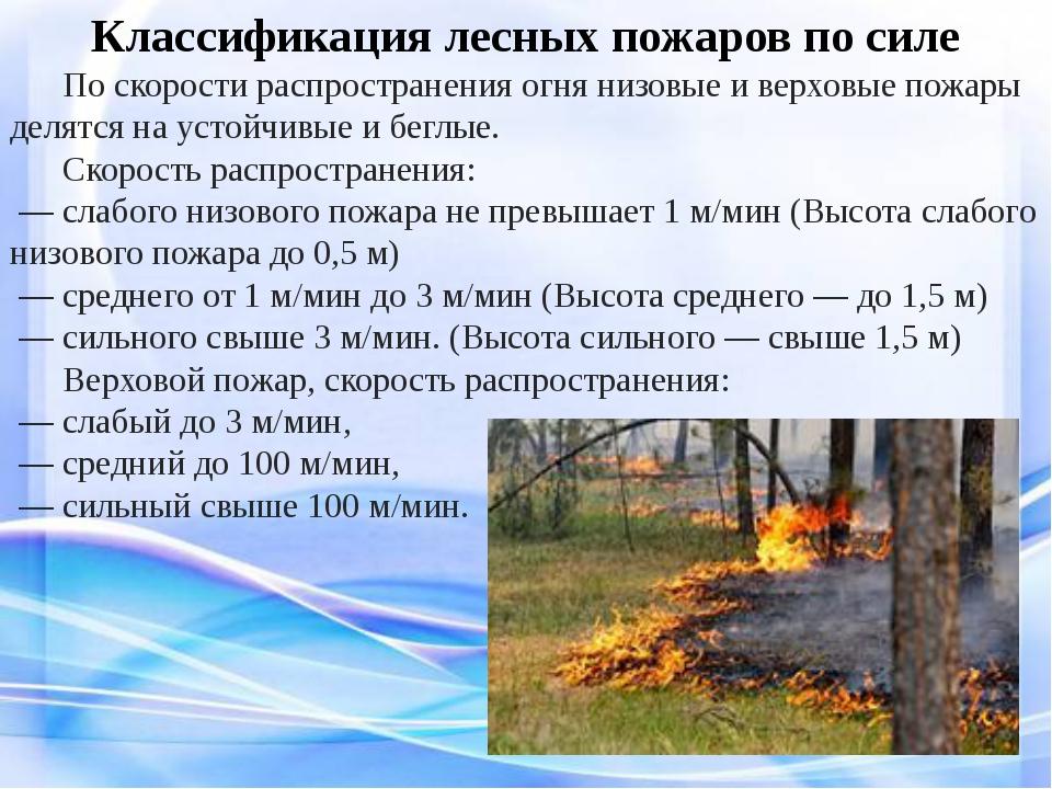 Классификация лесных пожаров по силе По скорости распространения огня низов...