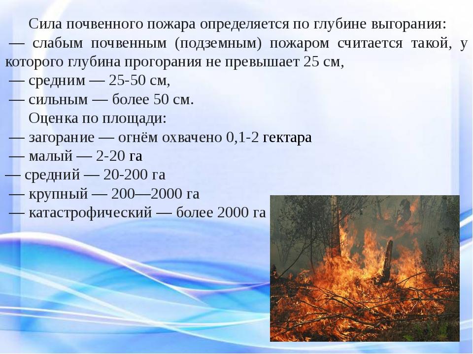 Сила почвенного пожара определяется по глубине выгорания: — слабым почвенн...